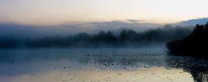 Morning Mist VI by CalleHoglund