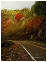 Autumn Drive, Black Mountain by TRBPhotographyLLC
