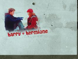 Harry and Hermione by Lennves