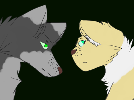 Wolf and cat by xXCloudz
