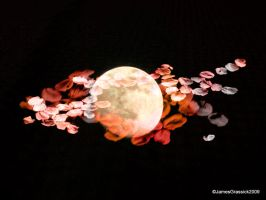 blossomoon by jamesgrassick