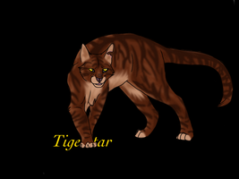 Tigerstar Finished with BG by FirehCat