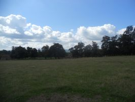 Petworth House and Park 115 by VIRGOLINEDANCER1