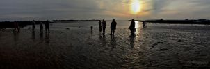 Dog Walkers On The Beach by delboy1066