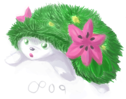 1 LAYER, SHAYMIN ONLY, FD by MythTrainerInfinity