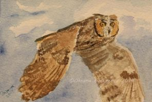 Watercolor and Ink #21  - Long-Eared Owl by Oksana007