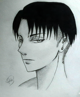 Cold eyes /Levi -ink by geriwiri