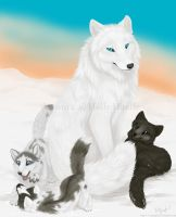 Arctic foxes by CunningFox