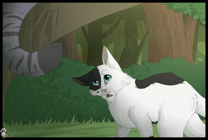 .:Patchpaws Question:. by indesomniac