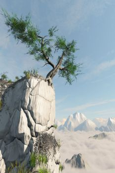 Tree-on-Cliff by ren-ort