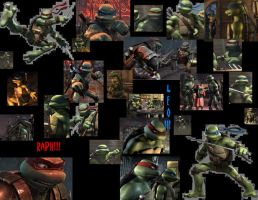 raph and leo wallpaper by nukagirl