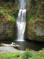 Lower Multnomah Falls by rifka1