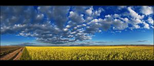 Hungarian skies pt.CXVIII. by realityDream