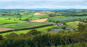 Scrabo Farmland R by Gerard1972