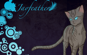 Jayfeather Wallpaper by Shatterwing123