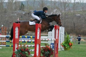 Show Jumping - 11 by Silver-Stock-Images