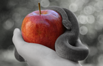Snakes Really Don't like Sitting on Apples by Nazegoreng