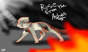 America- Rise from the Ashes by Sikey101