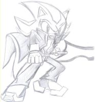 Shadow the Hedgehog by NeoMetalSonic