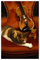 The Cat, Bear and the Fiddle by RevelationSpace