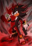 Shadow the Hedgehog by Windhover07