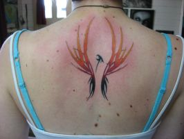coloured phoenix 2 by phoenixtattoos