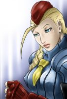 Sketch Series - Cammy by DUNKMASTA