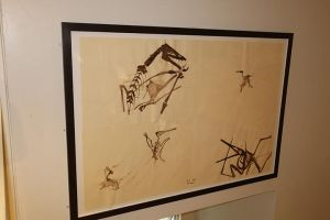 PterosaursDrawings by PaleoGuy