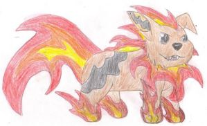 Flaming Doggy by Battyniconi