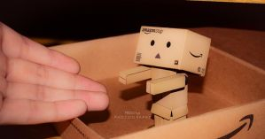 Let's go, Danbo! by Missorys