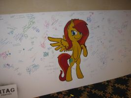 Fiesta Equestria Writing Wall by Urvy1A