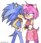 Sonic Boom: Sonic and Amy by Antych