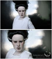 The Bride Of Frankenstein 1 by kamarza