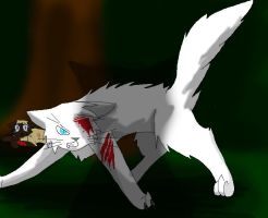A true ShadowClan warrior by annathewerewolf