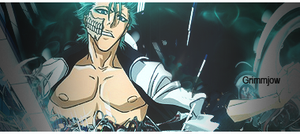 Grimmjow Cold Spirit by GreenMotion