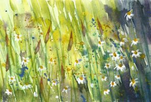 Wildflowers I by tracybutlerart