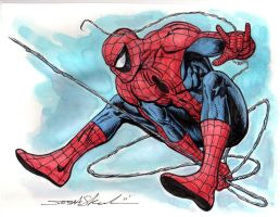 Spider Man by skeel76