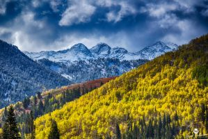The Glow of Autumn Against Winter HDR by mjohanson