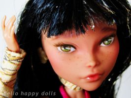 Monster high cleo repaint 1 by hellohappycrafts