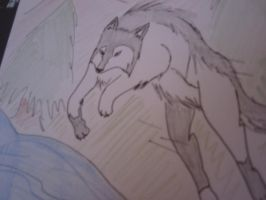 Leaping Wolf by sexy999