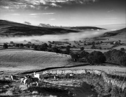 Pennines - BW by Wayman