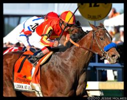 Lookin at Lucky's Preakness by Jessie-kad