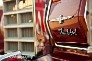 Thunderbird by TWOphotography