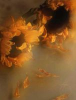 Sunflower Tears by JournalMTW