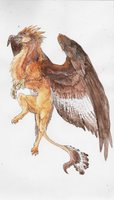 watercolor gryph by bolthound