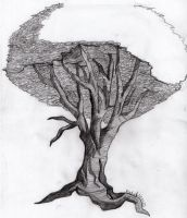 Tree from Spain by HimmelMidgard