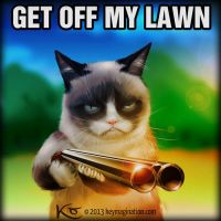Grumpy Cat Get off my Lawn 2013 by Keymagination