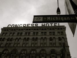 Congress on Michigan. by twolapdesigns