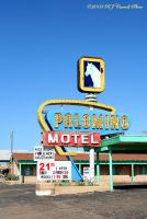 Palomino, Route 66, NM by rjcarroll
