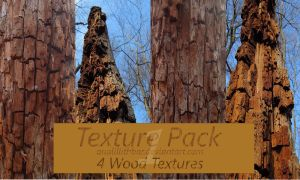 Wood Texture Pack 1 Stock by analillithbar